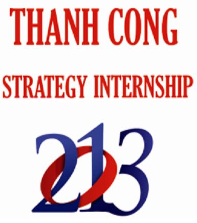thanh cong strategy internship